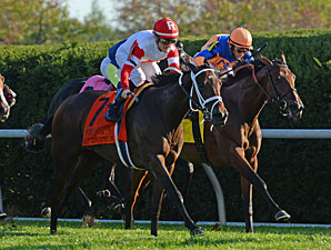 Kitten's Dumplings wins the 2013 QE II.