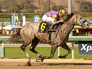 Kobe's Back wins the San Vicente Stakes.