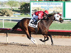 L. A. Weekend wins the 2013 Coyote Handicap.