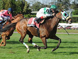 La Cloche wins the 2012 Athenia.