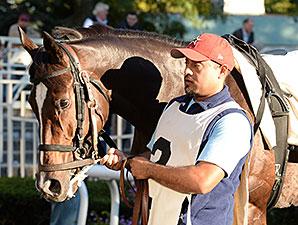 La Tia wins the Athenia Stakes.