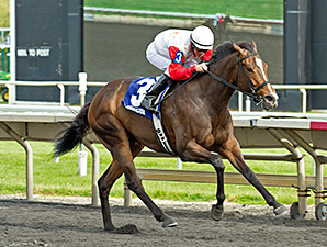 La Tia wins the 2014 Arlington Matron.