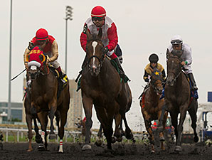 La Tia wins the 2014 Ontario Matron.