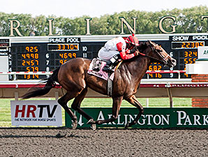 La Tia wins the 2012 Purple Violet Stakes.