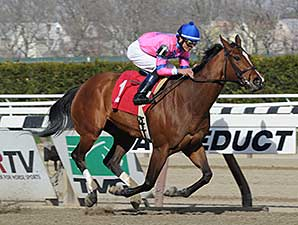 La Verdad wins the 2014 Distaff Handicap.