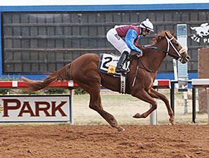 Lady Genius wins the 2013 New Mexico Eddy County Stakes.