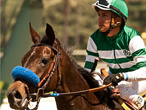 Lady of Shamrock wins the Santa Barbara Stakes via disqualification.