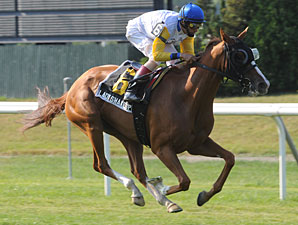 Lady Shakespeare wins the 2010 New York Stakes.