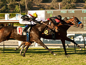 Lady Ten wins the 2012 Autumn Miss.