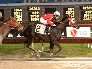 Lassell wins the 2012 Sun Power Stakes.