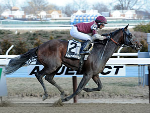 Last Gunfighter wins the 2013 Excelsior.