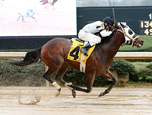 Laurie's Rocket wins the 2013 Hot Springs Stakes.