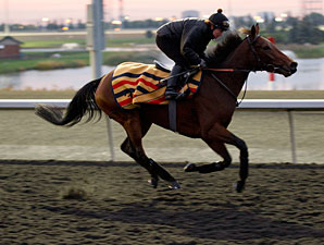 Lay Time - Woodbine, October 9, 2012