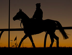 Lay Time - Woodbine, October 11, 2012