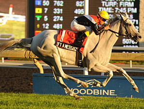 Left a Message wins the 2013 Flaming Page Stakes.