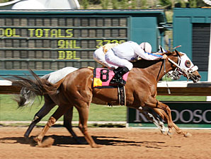 Lefty Who wins the 2010 Sierra Blanca.