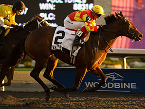 Leinan wins the Gloriuos Song Stakes at Woodbine.