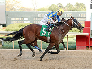 Lemon Drop Dream wins the 2014 Count Fleet Sprint Handicap