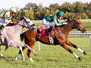 Lemon Juice wins the 2011 Laurel Futurity.