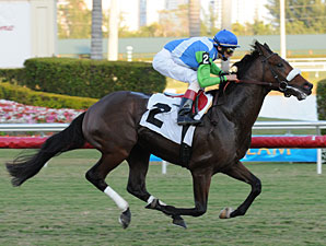 Lentenor breaks his maiden, January 20, 2010.
