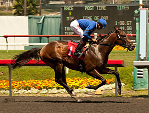 Let Em Shine wins the 2013 Came Home Stakes.