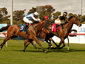Liberian Freighter  wins the 2011 Inglewood Handicap.