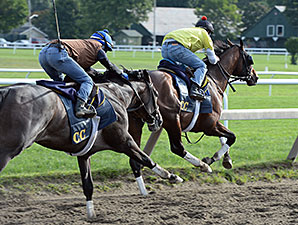 Tonalist (front) and Life in Shambles - Saratoga, August 16, 2014.