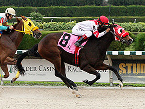 Light Bringer wins the 2014 Chispiski Stakes.