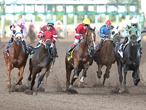 Lil' Apollo wins the 2013 Minnesota Derby.