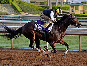 Little Alexis works towards the Breeders' Cup.