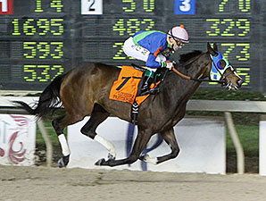 Little Face wins the 2014 LA-Bred Premier Night Ladies Starter.