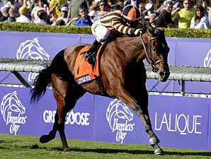 Little Mike in the Breeders' Cup Turf at Santa Anita.