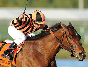 Little Mike wins the 2011 Canadian Turf Stakes.