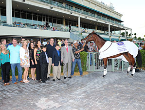 Little Mike paraded at Gulfstream Park on December 1, 2012.