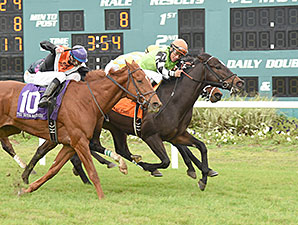 Lochte wins the 2015 Tampa Bay Stakes.