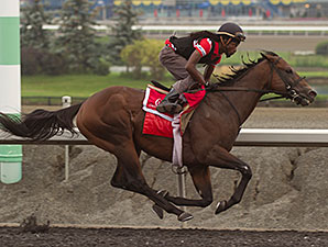 Lockout - Woodbine Race Course, 09/05/2014