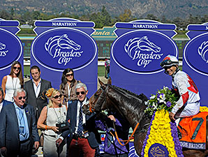 London Bridge wins the 2013 Breeders Cup Marathon