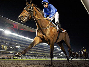 Long John wins the 2014 UAE 2000 Guineas.