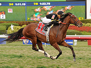 Long On Value wins the 2015 Canadian Turf Stakes.