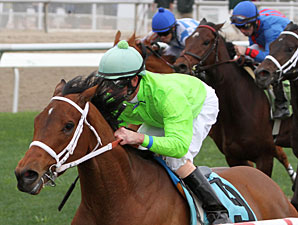 Look At the Time wins the 2012 Gentilly.
