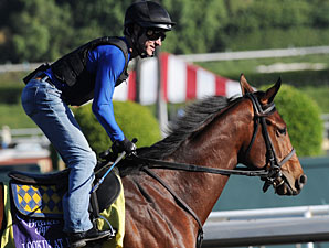 Lookin At Lucky at the 2009 Breeders' Cup