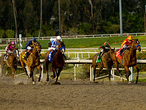 Lookin At Lucky wins the 2009 CashCall Futurity.