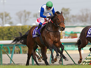 Lord Kanaloa wins the Takamatsunomiya Kinen.