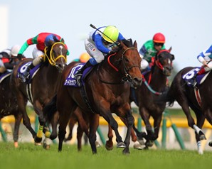 The Yasuda Kinen (Jpn-I), the spring's defining race for milers in Japan, was won by elite sprinter Lord Kanaloa, who was trying the distance for the first time in 2 1/2 years at Tokyo racecourse.
