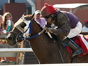 Louisiana Flyboy wins the 2014 Lafayette Stakes.