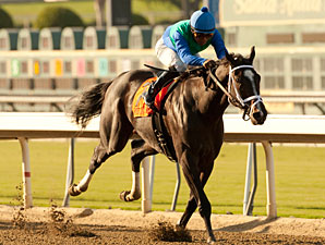Love and Pride wins the 2012 Zenyatta.
