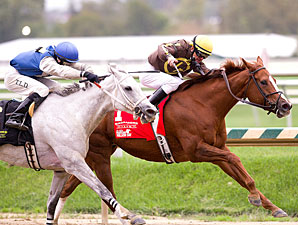 Love That Dance wins the 2011 Maryland Million Distaff.