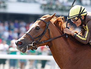 Love That Dance wins the 2011 Open Mind.