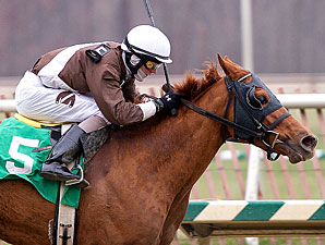 Love's Reason wins the 2010 Juvenile Filly Championship.