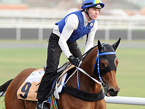Lucky Nine - Dubai 2012